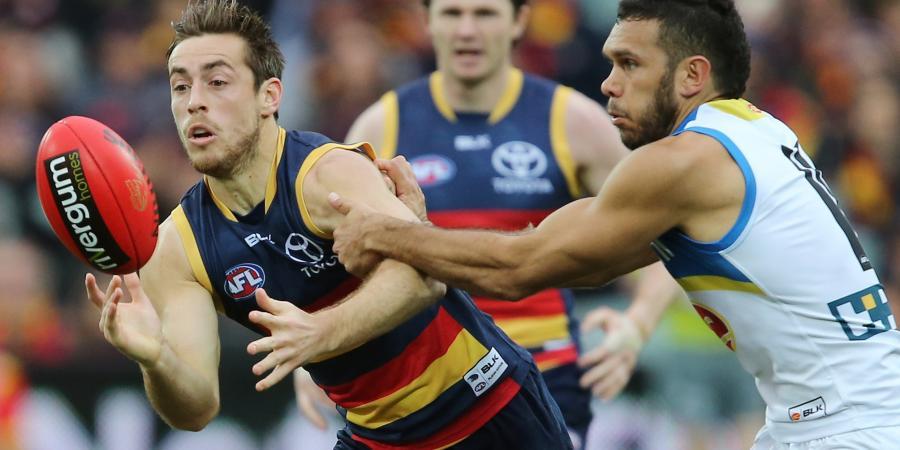 Adelaide's Douglas could make AFL return
