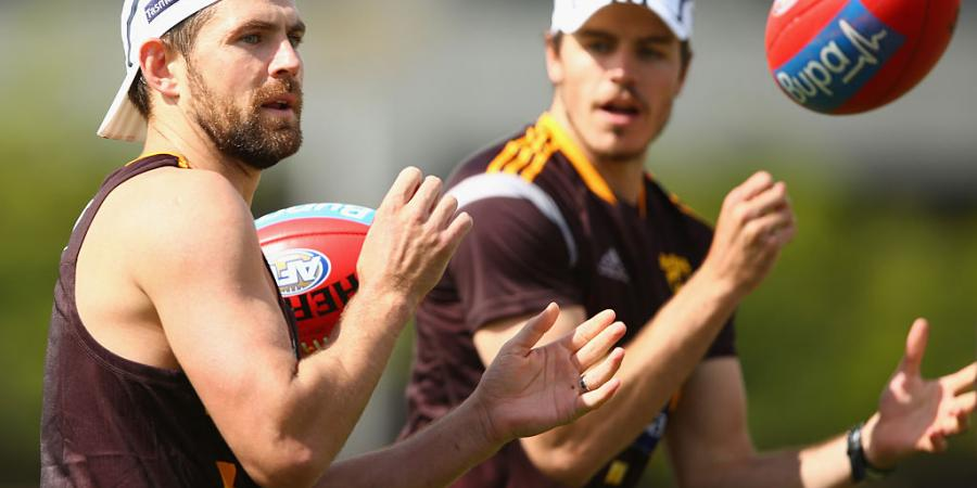 Hawks hungry to improve: Hodge