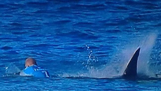 Shark! J Bay called off for the day (but Mick and Julian are ok)