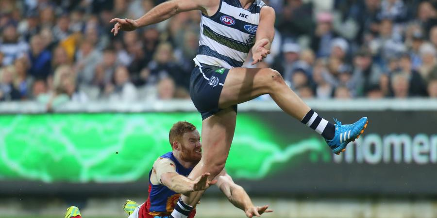 Lions Fight Hard in Loss to Cats