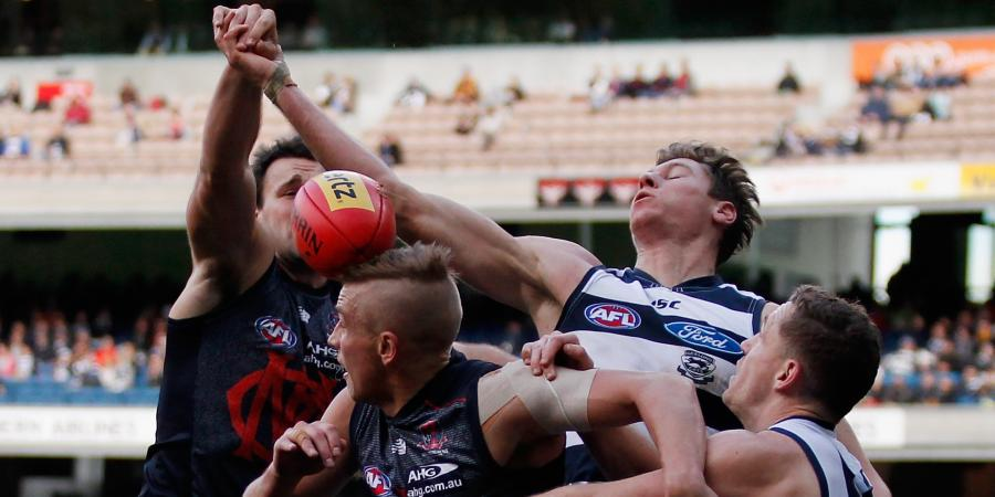 Dees Outclassed By Cats