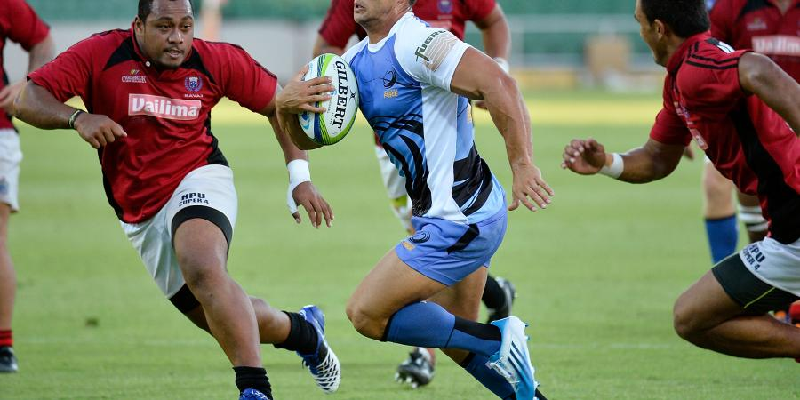 The Western Force Half Back Conundrum