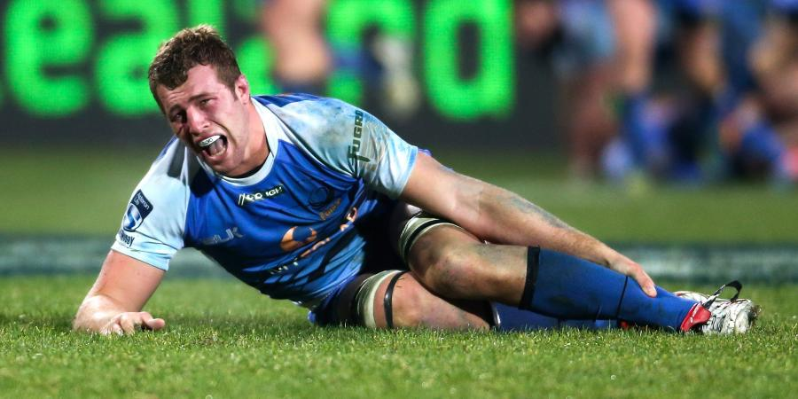 Force Sign Future Wallaby