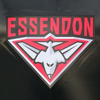 Glory and Fame - Analysing Essendon by the Numbers