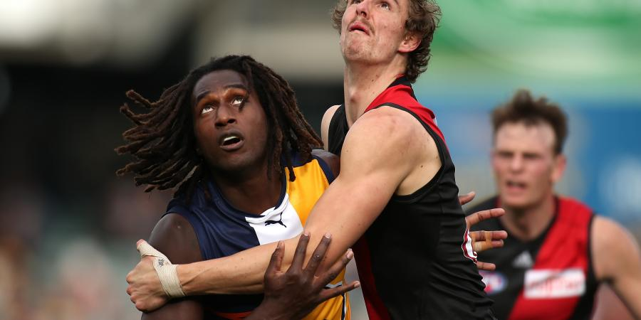 Doing the Maths � West Coast Eagles v Essendon Round 11 2015