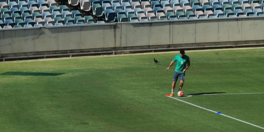 Fired up Socceroo Jedinak itching to play