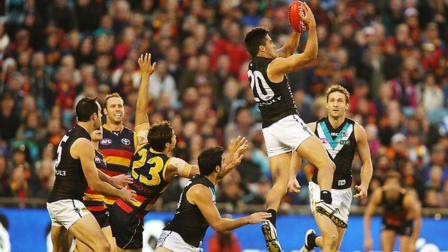 Whose AFL youngsters would you rather: St Kilda, Adelaide or Port Adelaide?
