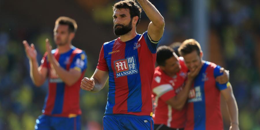 Jedinak to remain at Palace