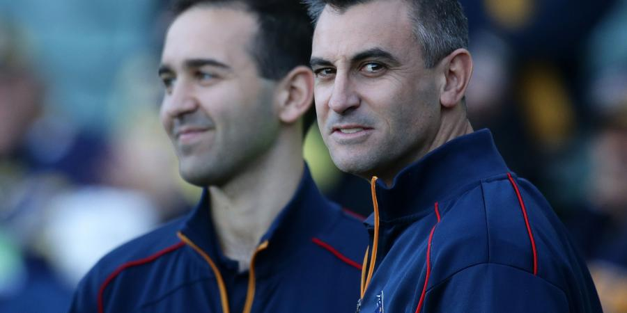 Crows don't feel cheated: Camporeale