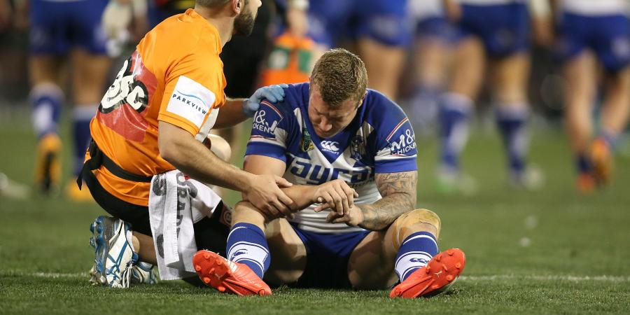 Dogs are fine without me: Hodkinson