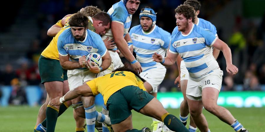 Wallabies to play Argentina at Twickenham