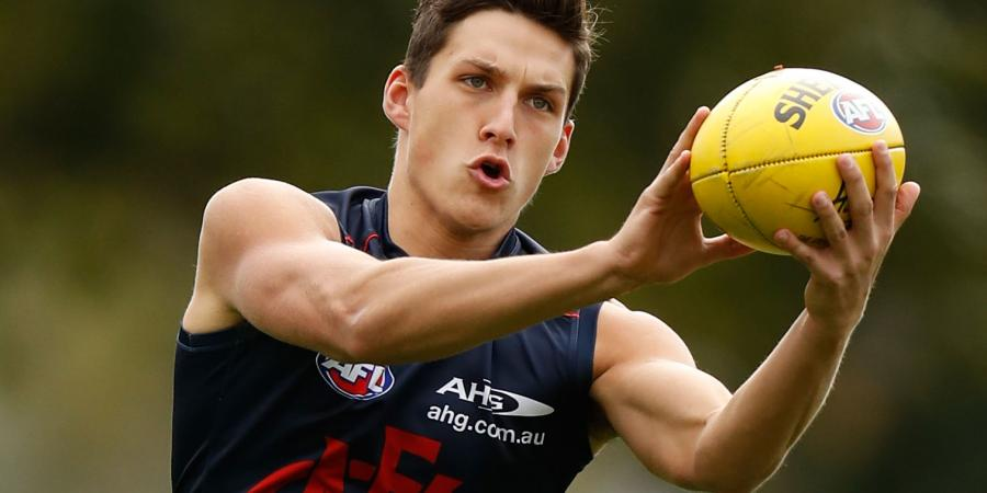 Melbourne will debut top ten draft pick v Hawks