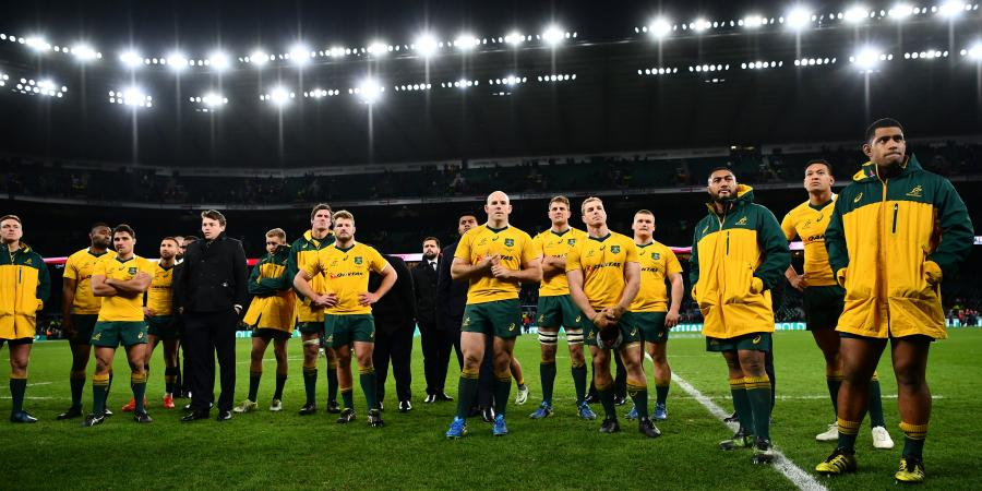 Wallabies to face Brave Blossoms in Japan