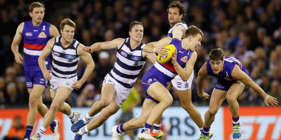 Resilient Dogs set for Cats: Macrae