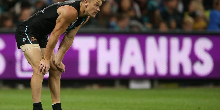 Port sweat on Lobbe, rule out Gray
