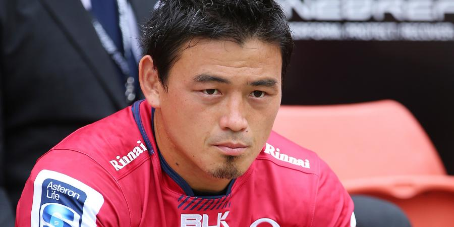 Goromaru handed rare Reds chance