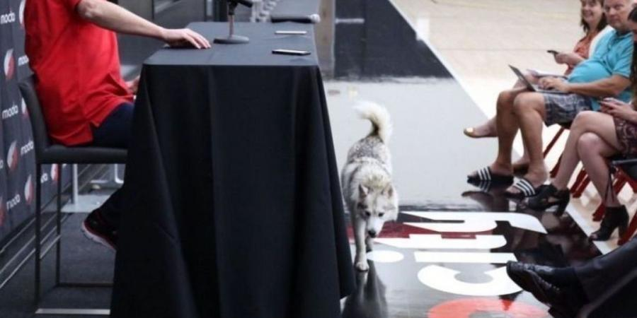 Meyers Leonard's dog interrupts Stotts' media session