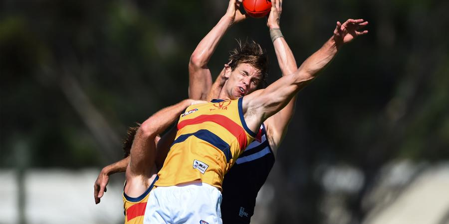 Adelaide defender still suffering concussion symptoms SEVEN weeks on.
