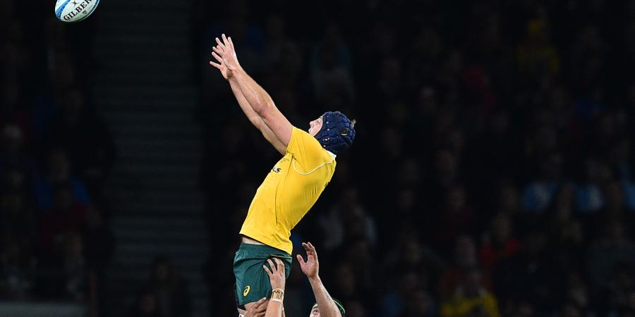 Wallabies can avoid lineout woes: Pocock