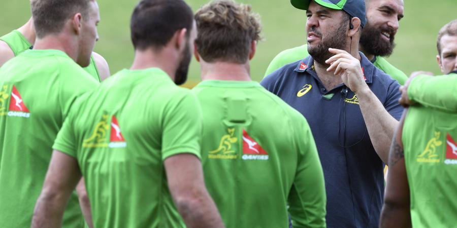 Wallabies 'not in Paris for a holiday'