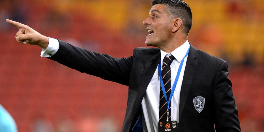 Aloisi slams 'unacceptable' Roar flogging