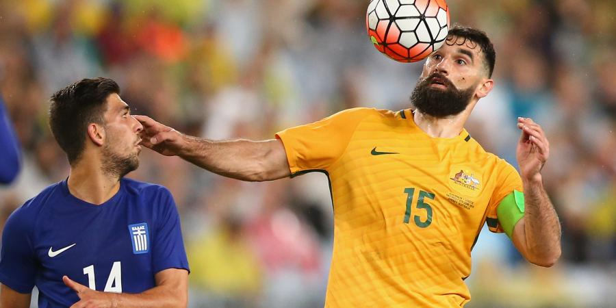 Jedinak misses Socceroos training