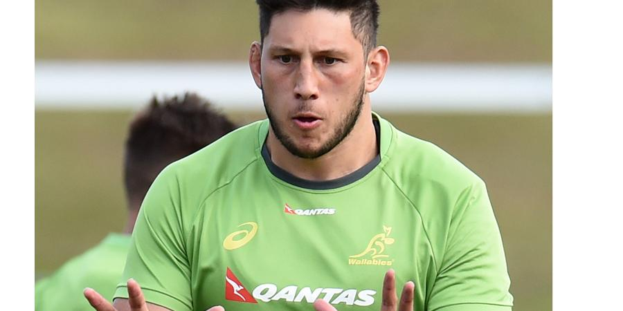 Wallaby Adam Coleman backs Force to thrive