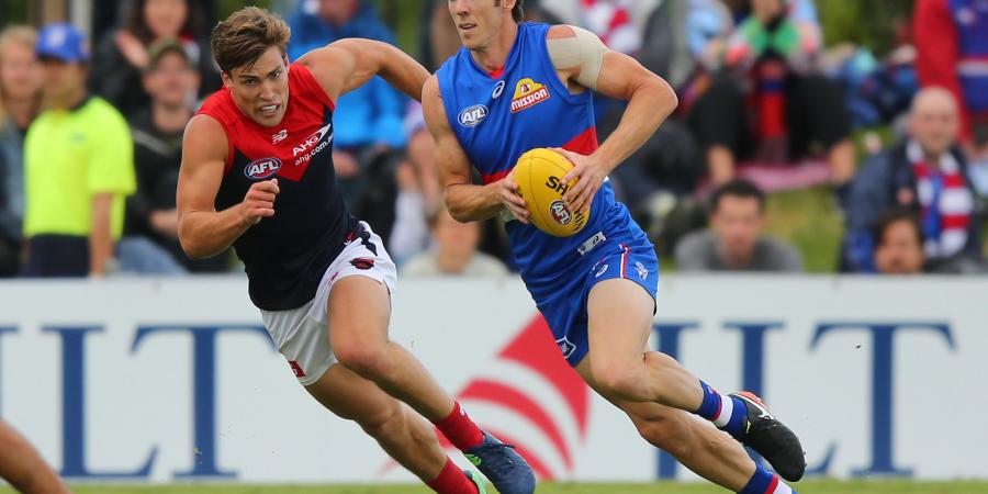 JLT Report: Dogs Lose, But Plenty Of Positives To Take From It