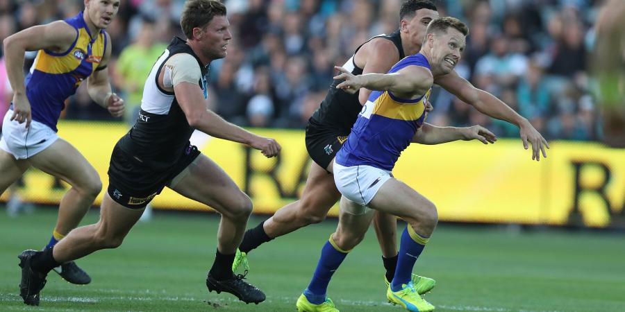 Round 16 Preview: West Coast vs. Port Adelaide