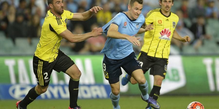 Smeltz calls on A-League to change fixture