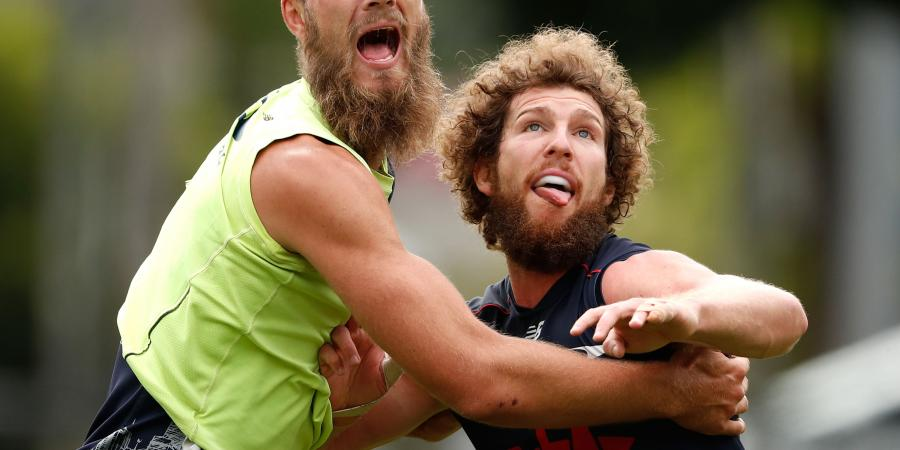Bearded Demon gives Goodwin a headache