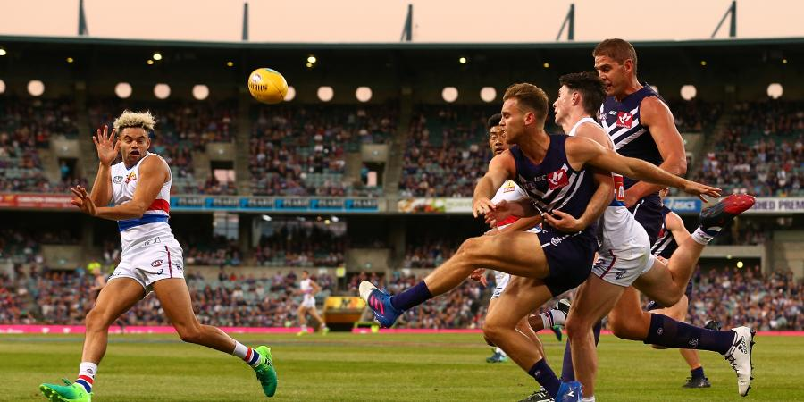 The Trade Week That Was: New Dog On The Block, Update On Stringer, More Dogs Potentially On The Move And A Lion To Head Home?