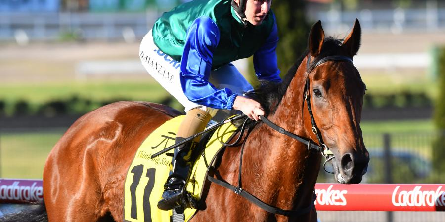 Bonneval firms as favourite for the Caulfield Cup